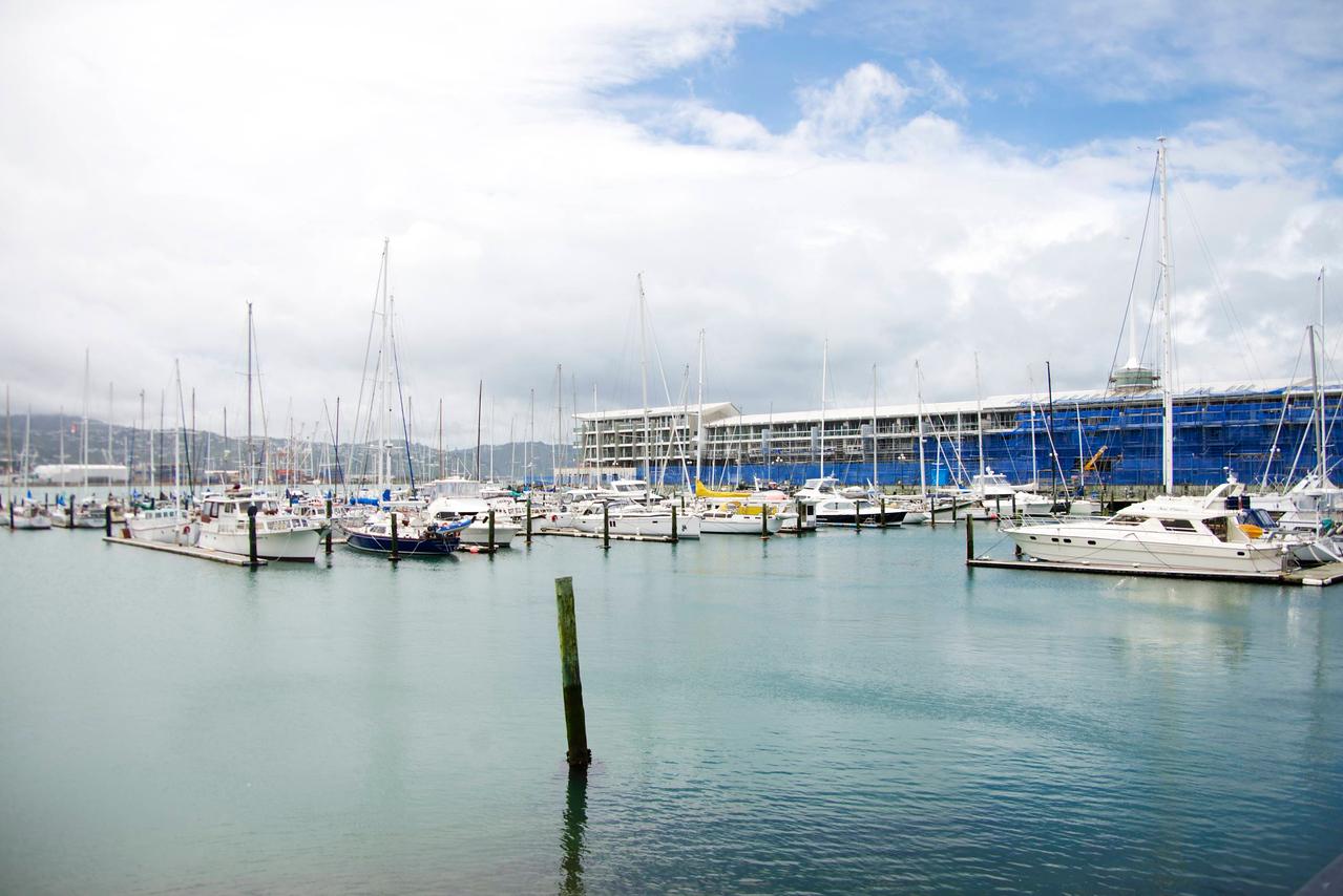 Oriental Bay-Condos Being Built In Background