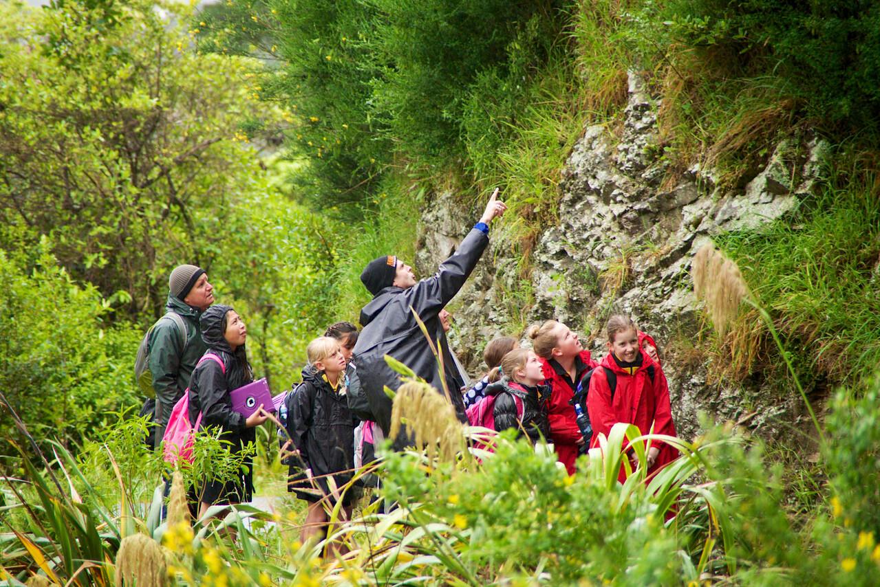 School Children Being Guided Through Zealandia