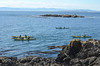 Kayakers off County Park, Vancouver Island in distance