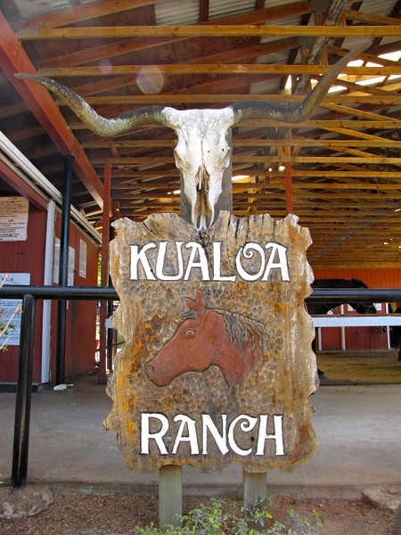 "Today we went to Kualoa Ranch here in Oahu, Hawaii and did the Full Day Adventure package... great day!! Click below to see our Video of it all: <a href=""http://nancyandshawnpower.com/kualoa-ranch-oahu-hawaii/"">http://nancyandshawnpower.com/kualoa-ranch-oahu-hawaii/</a>"
