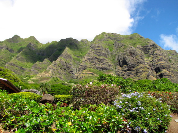 Here's the backdrop of the Kualoa Ranch... an absolutely beautiful location which is the reason it's been host to many movie & tv shows being made there.
