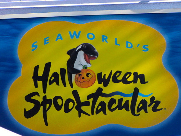 """During our time in San Diego we visited SeaWorld and as it's October they had some pretty fun Halloween decorations and events going on... you can see our video at: <a href=""""http://nancyandshawnpower.com/san-diego-seaworld-spooktacular/"""">http://nancyandshawnpower.com/san-diego-seaworld-spooktacular/</a>"""