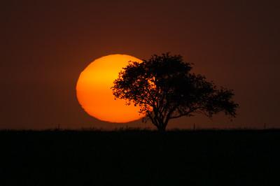 Dry Sunset 3