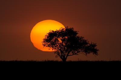 Dry Sunset 2