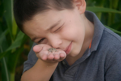 Young boy with tiny amphibian in his hand.