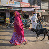 woman walking goat