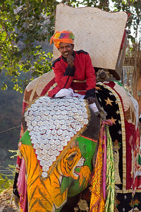 elephant driver