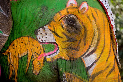 trompe l'oeil tiger eating fawn on painted elephant