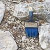 blue paintbrush Safed cemetary