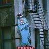 Fresh Freddy