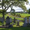 Te Waimate Mission graveyard