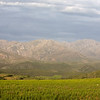 mountains near Oudtshoorn