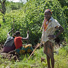 Hadza man with two women digging