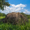 abandoned Hadza hut 2