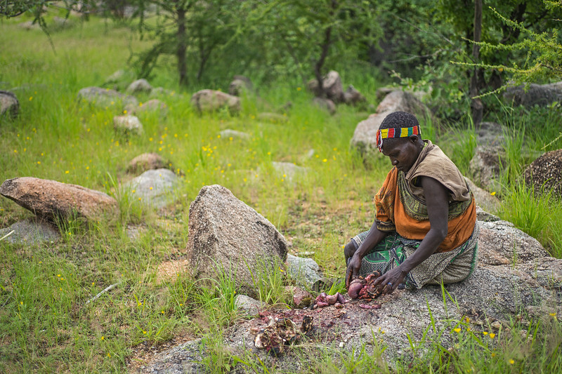 Hadza woman with turtle guts