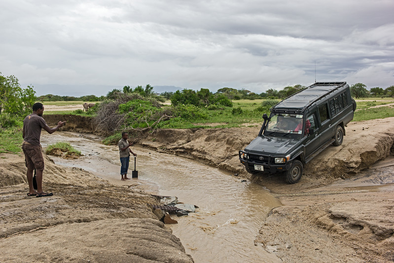 encouraging the safari vehiclle to ford hhe stream
