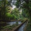 sluice Bwindi Impenetrable Forest