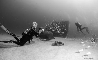 Shipwreck Of Esso Bonaire