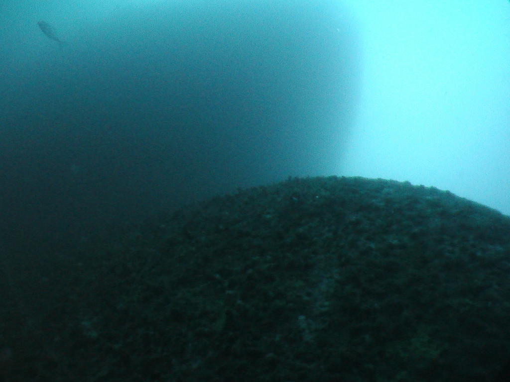 View looking up the bow