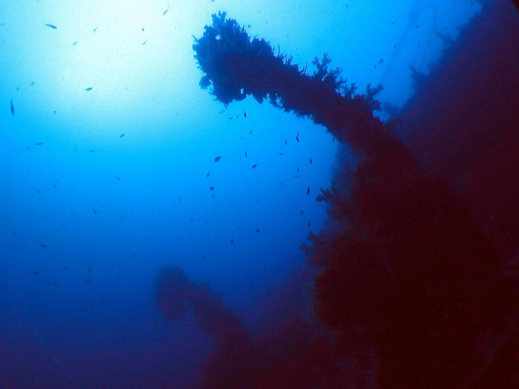 Lifeboat davits