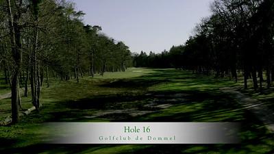 GcdD Hole 16