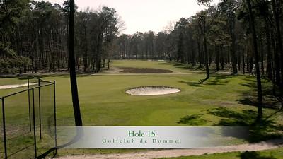 GcdD Hole 15