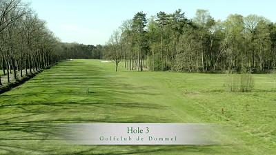 GcdD Hole 3
