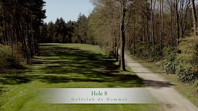 GcdD Hole 8