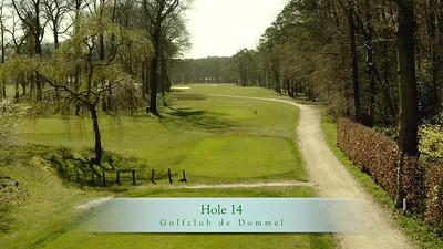 GcdD Hole 14
