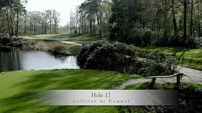 GcdD Hole 17