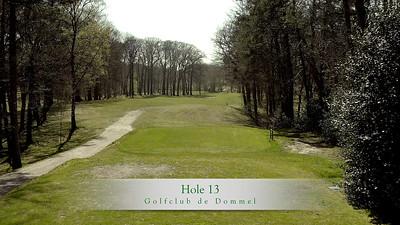 GcdD Hole 13