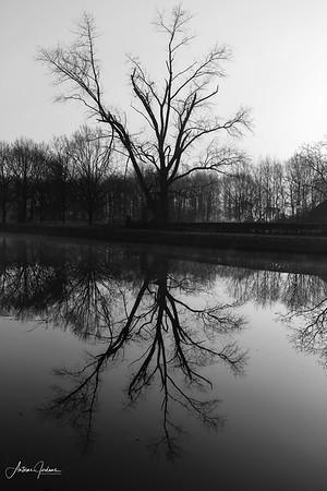 Dutch Riverscapes