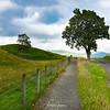 Stroll around Glen Clova