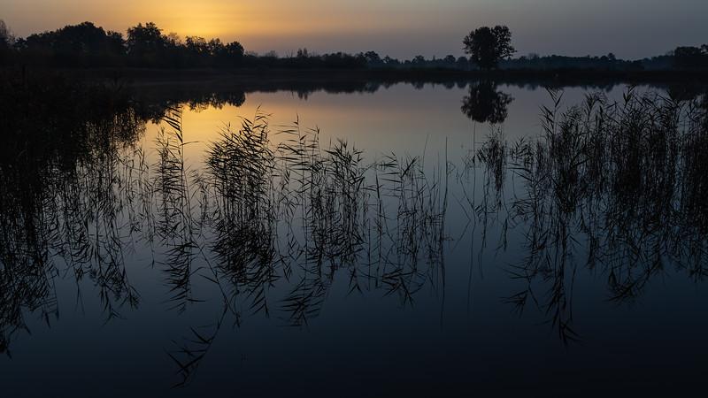 Zonhoven (BE) : De Wijers