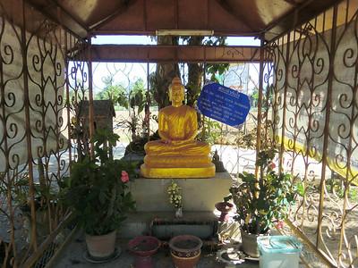 Wat Pa Dang Buddha