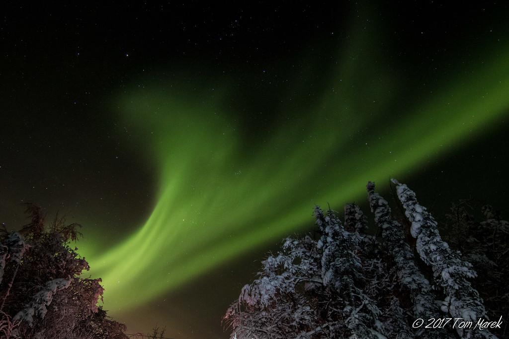 2017 Fairbanks-038