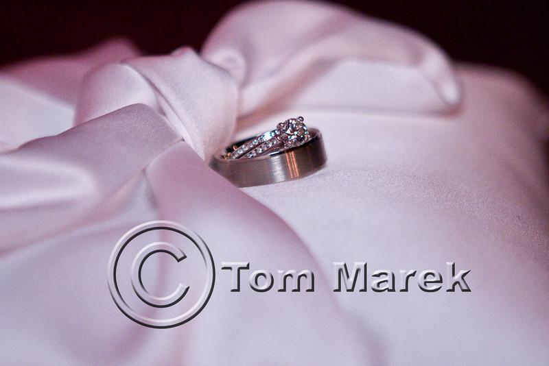 20100109_Campbell Wedding_TM_0356