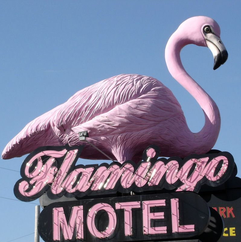 Every tourist trap has to have a Flamingo Motel!