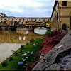 Pinter Vecchio, Firenza, Italy