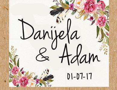 01-07-2017 ~ Adam and Danijela Wedding