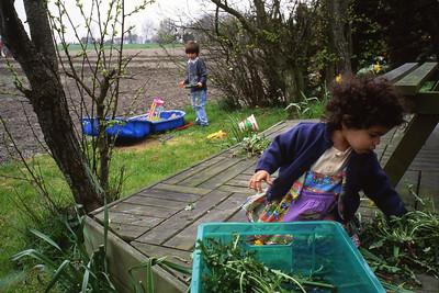 Samedi 23/04/1994.  Saskia ramasse les mauvaises herbes à Zuidzande.