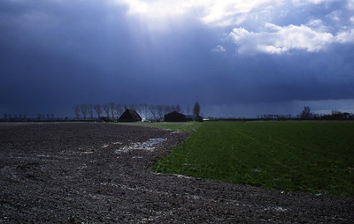 Mercredi 06/04/1994.  Paysage dans la région de Zuidzande.