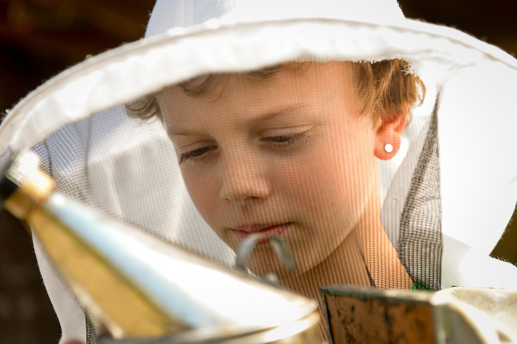 . Simon Bock, 8, holds a smoker used to calm bees before inspecting beehives with his father in the backyard of their Glassell Park home, Tuesday, February 25, 2014. (Photo by Michael Owen Baker/L.A. Daily News)