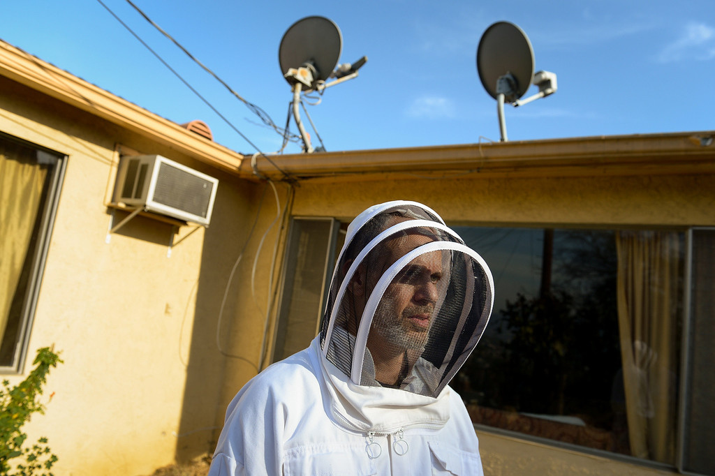 . David Bock wears a bee suit in the backyard of his Glassell Park home, Tuesday, February 25, 2014. (Photo by Michael Owen Baker/L.A. Daily News)