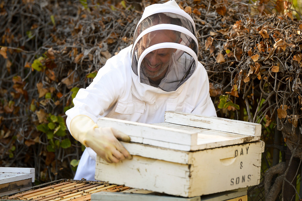 . David Bock lifts the top off a beehive in the backyard of his Glassell Park home, Tuesday, February 25, 2014. (Photo by Michael Owen Baker/L.A. Daily News)