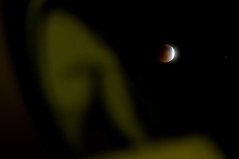 098 Blood Moon