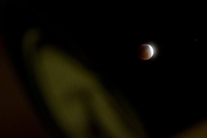 091 Blood Moon