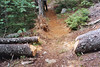 Trail repair