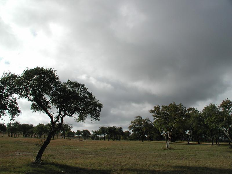 115 Texas scenery 2