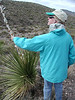 Observing a sotol plant\'s flaky skin